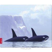Фото Speed-Link SILK Mousepad Orca (SL-6242-ORCA)
